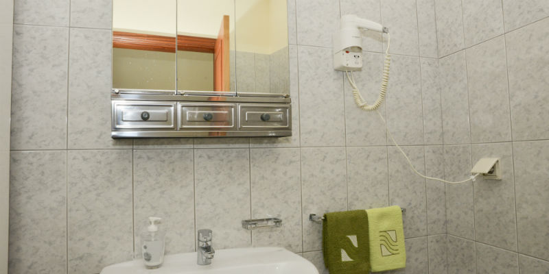 Shower room - Access to hairdryer